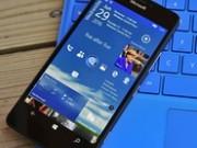 گوشی جدید مایکروسافت نسخه کاملا متفاوتی را از ویندوز موبایل اجرا میکند