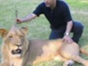 ویدئو :  مهران مدیری و شیرها