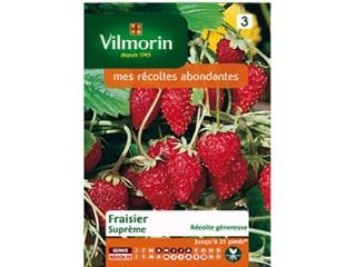 بذر توت فرنگی ویلمورین