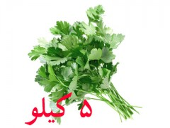 بذر جعفری اصلاح شده کشتزار 5 کیلویی