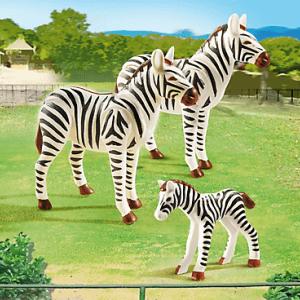 zebra family pm 6641