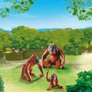orangutan family pm 6648