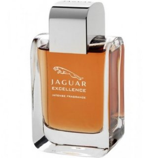 عطر مردانه جگوار – اکسلنس اینتنس ادو پرفیوم  (jaguar - Excellence intense EDP)